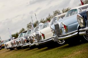 A line-up of classic Mercedes on display as part of a Car Club at The Classic at Silverstone